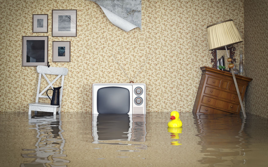 flooded basement due to sewer backup