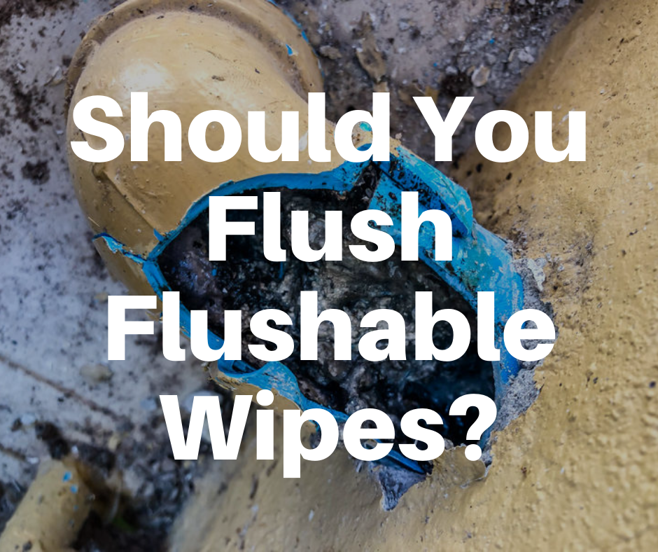 flushable wipes causing sewer clog